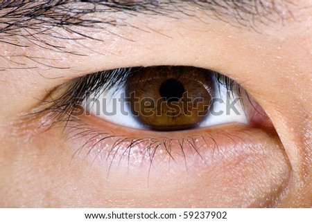 Close up of brown male eye - stock photo