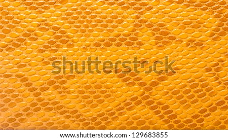 Close-up of brown snakeskin leather - stock photo