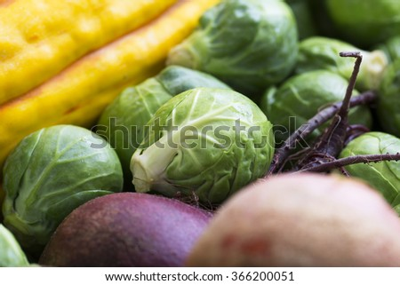 Close up of brussels sprout among other winter vegetables. - stock photo