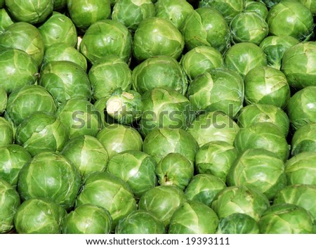 Close-up of Brussels Sprouts on market stall - stock photo