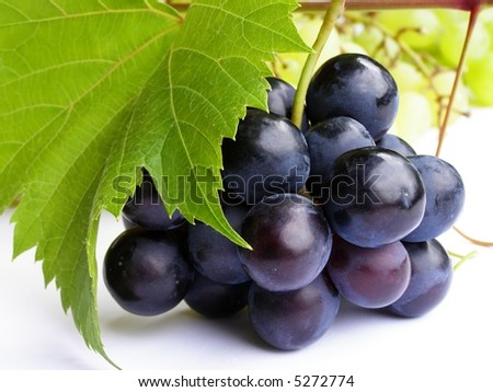 Close-up of bunch of black grapes on white background