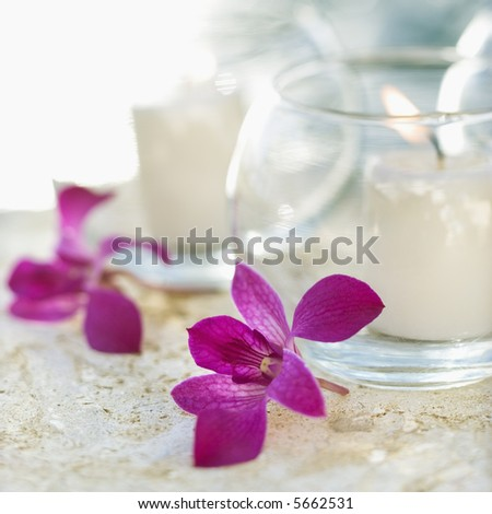 Close up of candles and purple orchids.