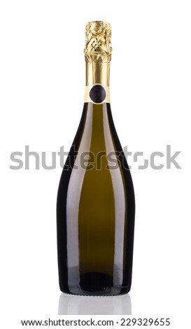Close up of champagne bottle. Isolated on a white background. - stock photo