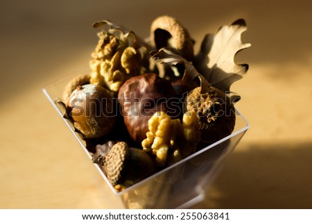 Close-up of chestnuts, acorns, walnuts and oak leaves  - stock photo