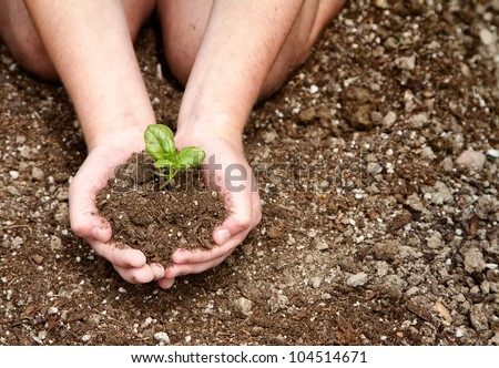 Close-up of child's hands holding dirt with a plant in it - stock photo