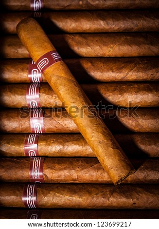 Close up of cigars in open humidor box