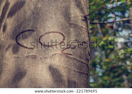 Close Up of CO2 Carved into Tree Trunk. - stock photo