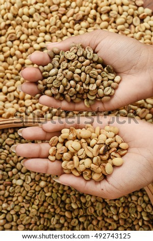 Close up of coffee beans on hand