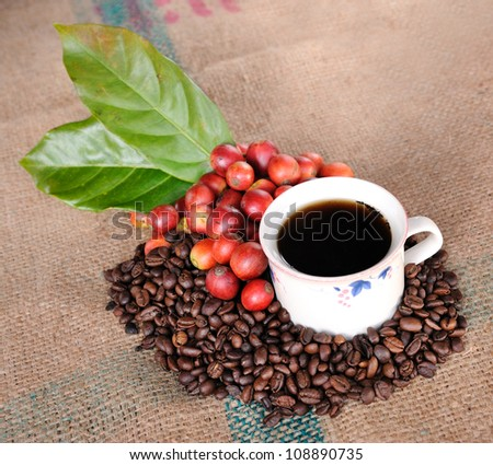 Close up of coffee cup and fresh raw coffee beans with leaf on texture background, selective focus. - stock photo