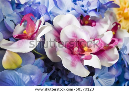 Close up of colorful flowers. - stock photo