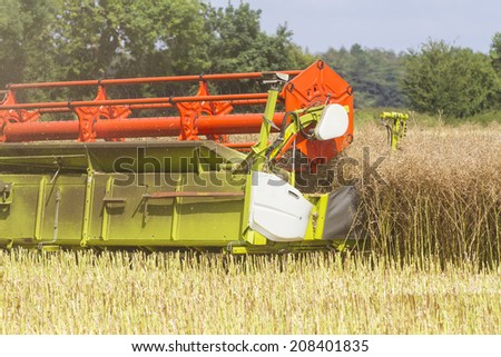 Close up of combine harvester harvesting oil seed rape - stock photo