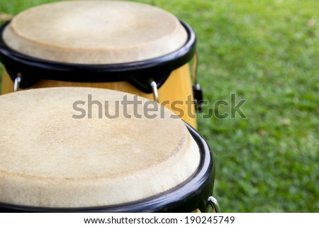 close up of Congas