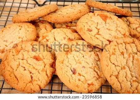 Close-up of cookies with bits of peanut buttery, flakey, brittle, chocolate covered candy bar baked into the cookies. - stock photo