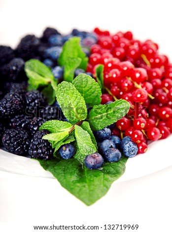 Close up of cranberries, blueberries, mulberries and mint on white plate - stock photo