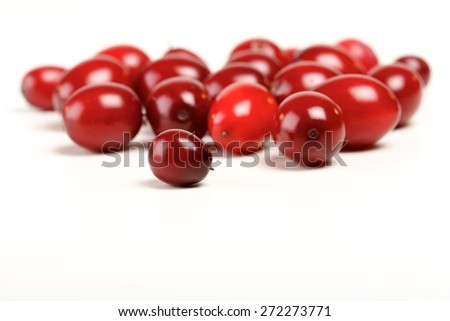 Close-up of cranberries on white background - stock photo