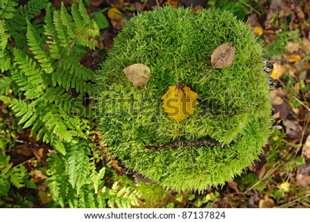 Close up of cut tree with thick moss looks like a face - stock photo