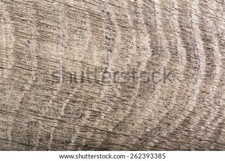 Close-up of dark gray wood (bog oak) composition. - stock photo