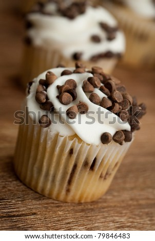 close up of delicious holiday homemade chocolate chip cupcake - stock photo