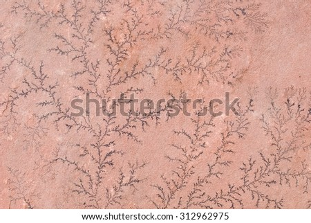 Close Up of Dendritic Formation on Sandstone - stock photo