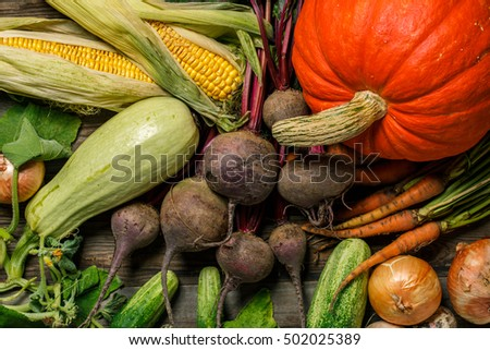 Close-up of different vegetables