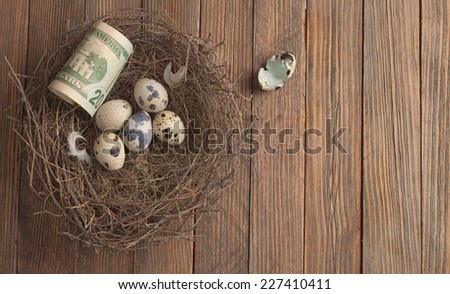 Close up of egg and money in bird nest - stock photo