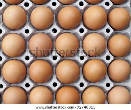 close up of eggs in cardboard container - stock photo