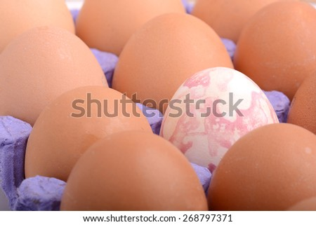 close up of eggs in cardboard container health food - stock photo