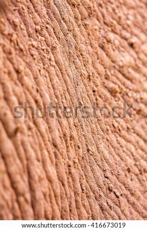 Close up of elephant skin texture - stock photo