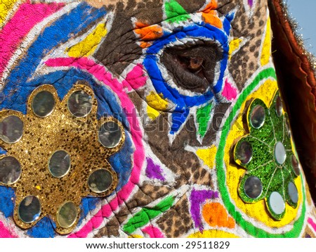 Close up of elephants eye decorated and painted for Jaipur elephant Festival, India - stock photo