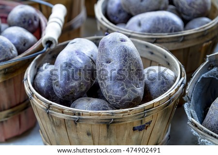 Close up of farm fresh purple potatoes in brown bushel baskets for sale at farmers market