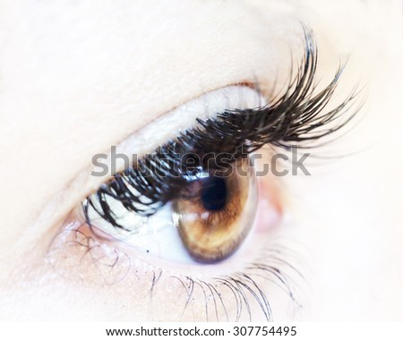 Close up of female brown eye with no make up and long lashes isolated