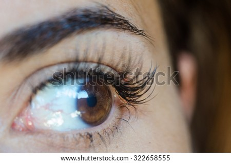 Close up of female brown eye with no make up,long lashes and eyebrow. Details in the face