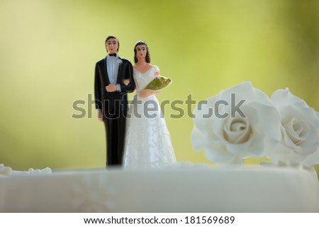 Close-up of figurine couple on wedding cake at the park - stock photo