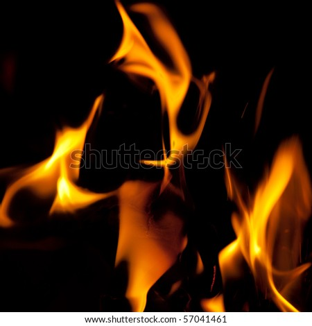 Close-up of fire and flames on a black background - stock photo