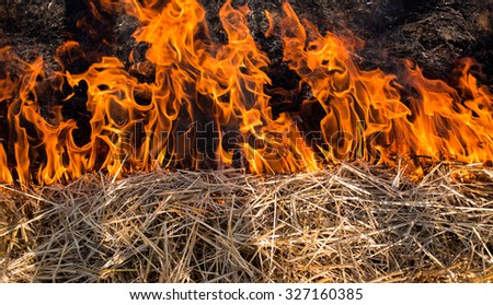 Close up of flames from fire burning straw