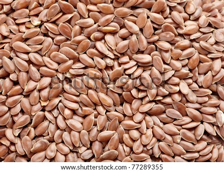 close up of flax seeds on white background - stock photo