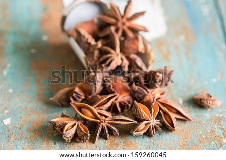 Close up of fragrant spice star anis - stock photo