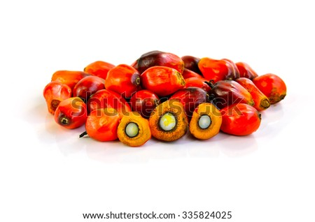 Close up of fresh palm oil fruits isolated on white background, selective focus.  - stock photo