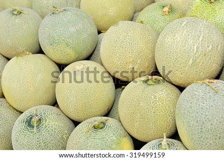 Close up of fresh ripe organic cantaloupe melons, selective focus. - stock photo