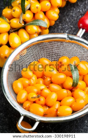 close up of fresh ripe sea buckthorns berries in  tea strainer on black stone background - stock photo