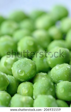 Close-up of fresh wet green pea - stock photo