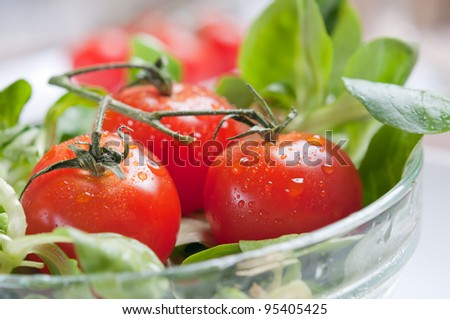 close-up of fresh wet green salad and tomato - stock photo