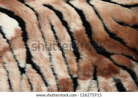 Close-up of fur background - stock photo