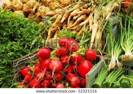 close up of garden radish and greens on market stand - stock photo