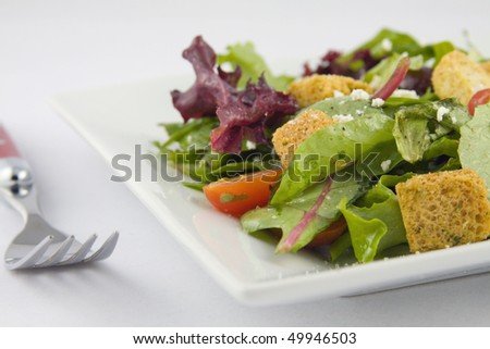 Close-up of Garden Salad - stock photo