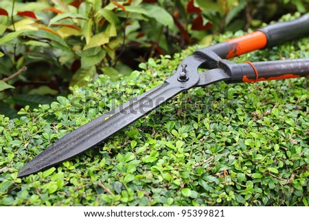 Home Design Ideas. garden shears. garden shears lawn and hedge ...