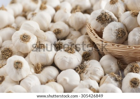 close up of garlic background