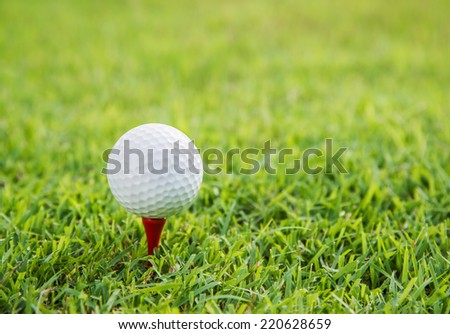 close up of golf ball on the green grass - stock photo
