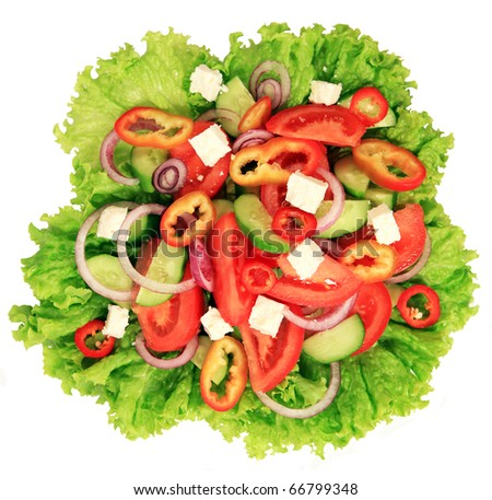 Close-up of greek salad - stock photo