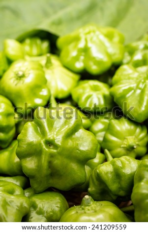 Close up of green chili pepper in vertical format